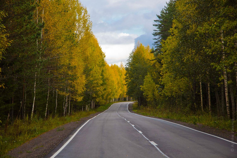 дорога-домой